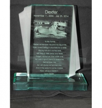 Acrylic and Glass Award