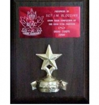 "4.5"" X 6.5"" Cherrywood plaque with engraved brass plate and star trim."